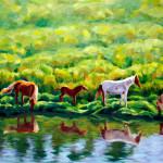 Caballos juanto al rio