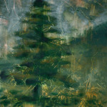 """Grattage"" Fir tree"